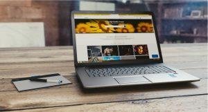 Ecrane de laptopuri